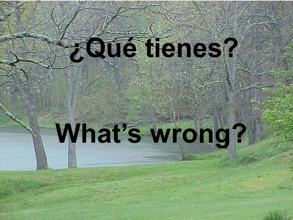 What's wrong ¿Qué tienes