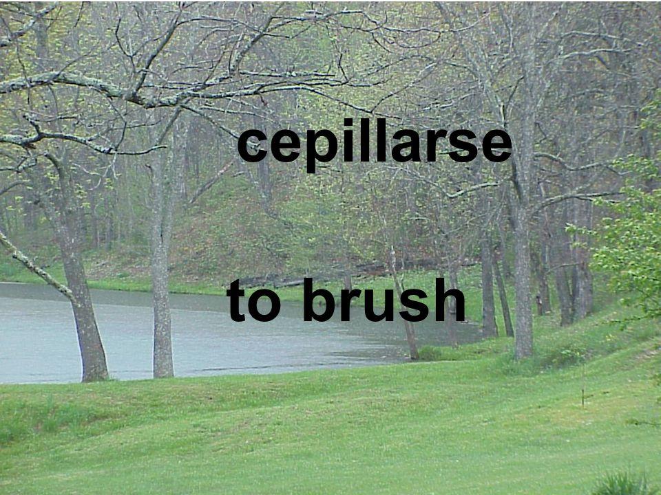 to brush cepillarse