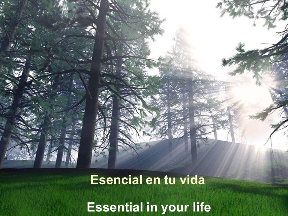 Vita Noble Powerpoints Esencial en tu vida Essential in your life