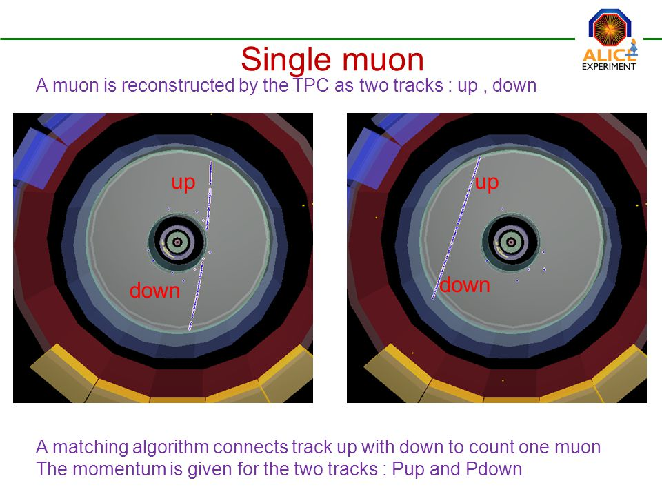 Single muon A muon is reconstructed by the TPC as two tracks : up, down up down A matching algorithm connects track up with down to count one muon The momentum is given for the two tracks : Pup and Pdown