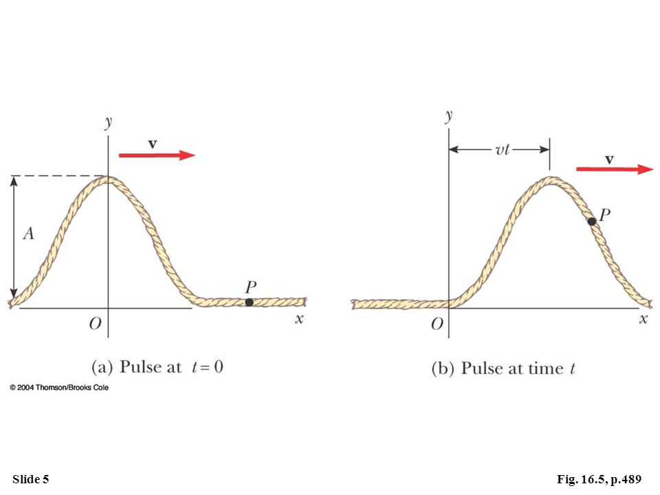 Slide 5Fig. 16.5, p.489