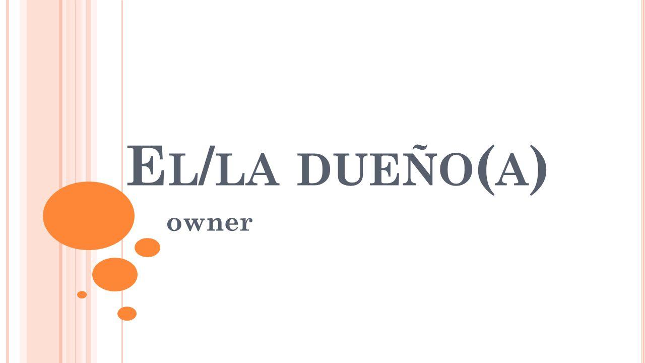 E L / LA DUEÑO ( A ) owner