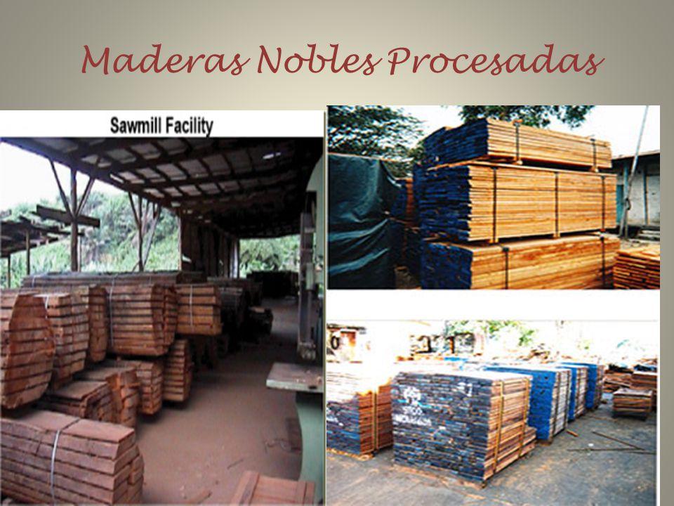 Maderas Nobles Procesadas