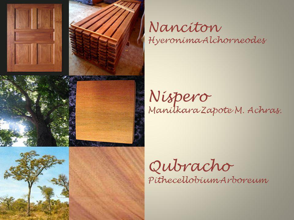 Nanciton Hyeronima Alchorneodes Nispero Manilkara Zapote M.