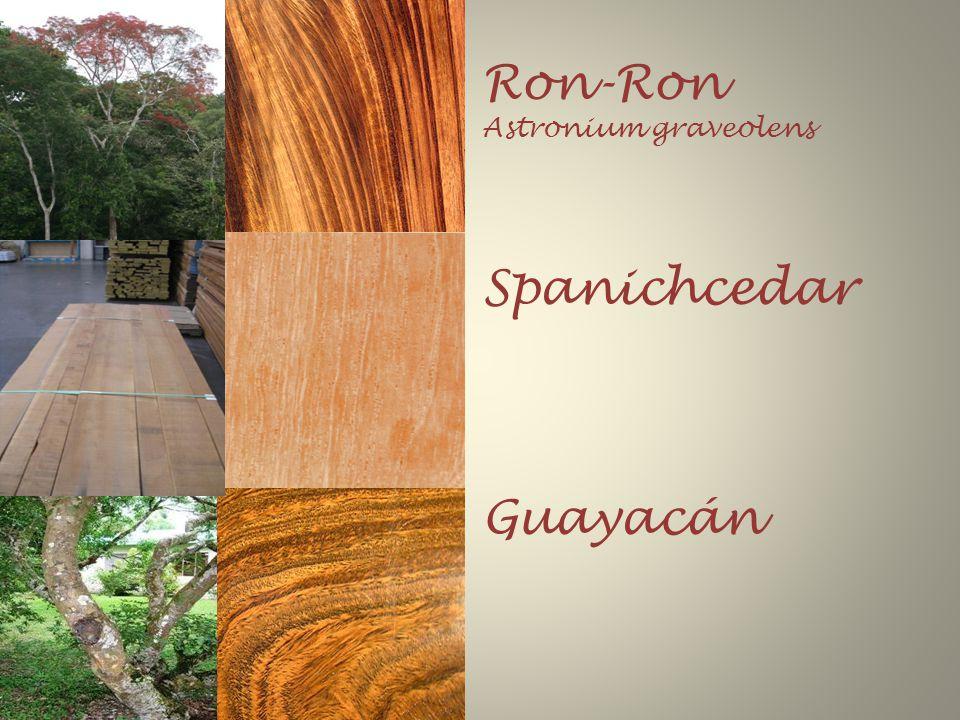 Ron-Ron Astronium graveolens Spanichcedar Guayacán