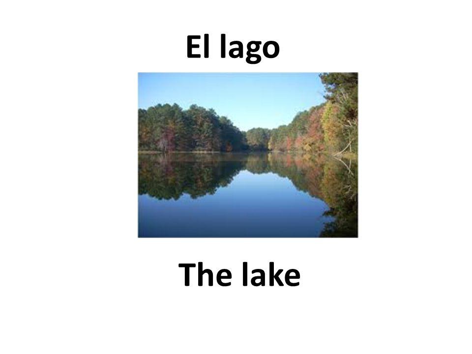 The lake El lago