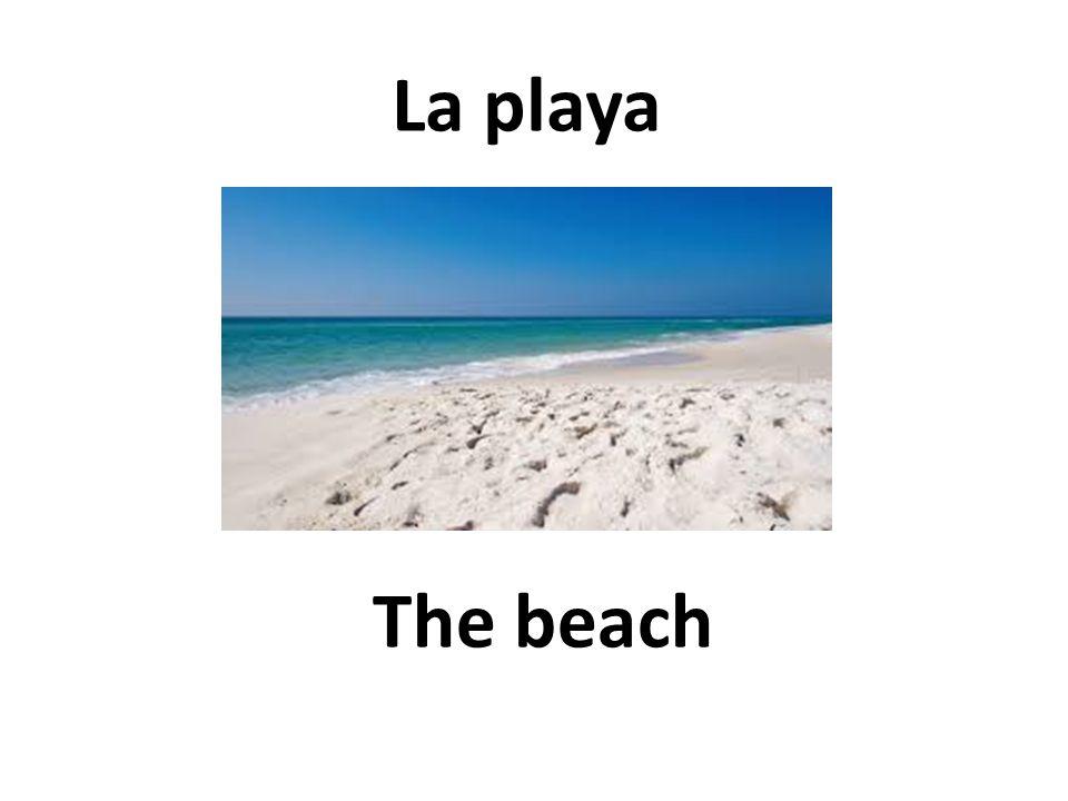 The beach La playa