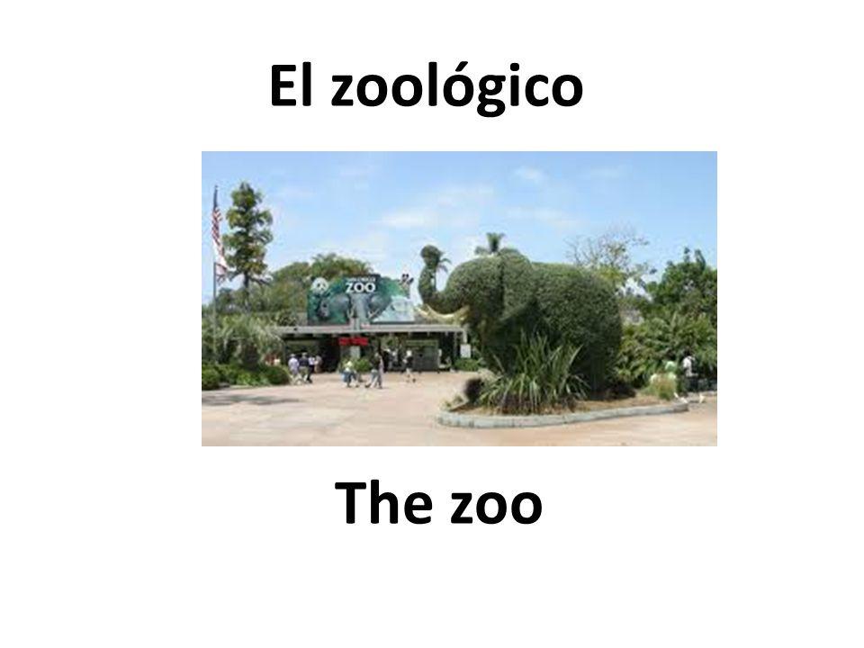 The zoo El zoológico