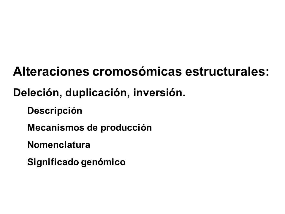 Alteraciones cromosómicas estructurales: Deleción, duplicación, inversión.