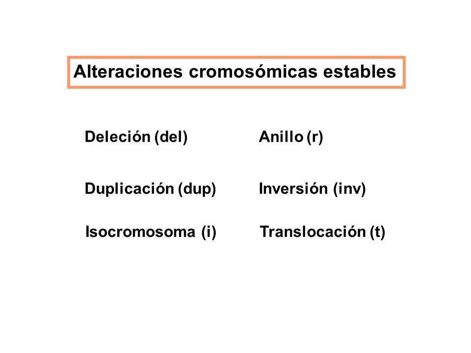 Alteraciones cromosómicas estables Deleción (del) Duplicación (dup) Isocromosoma (i) Anillo (r) Inversión (inv) Translocación (t)