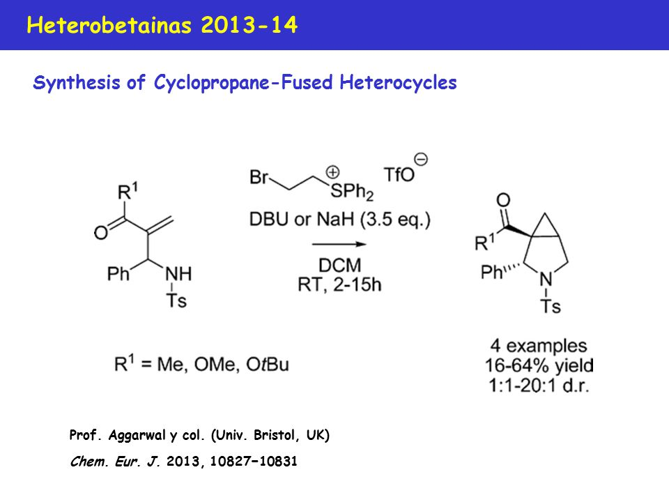Heterobetainas 2013-14 Synthesis of Cyclopropane-Fused Heterocycles Prof.