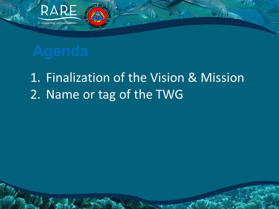 Agenda 1.Finalization of the Vision & Mission 2.Name or tag of the TWG