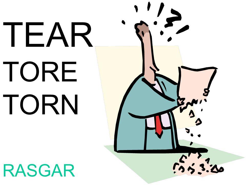 TEAR TORE TORN RASGAR