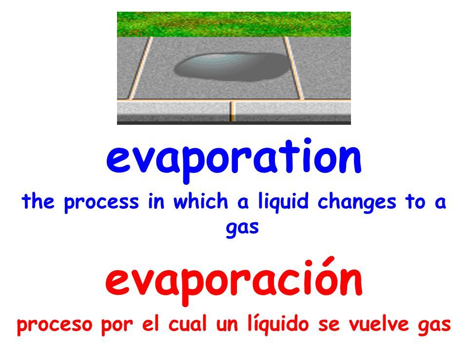 evaporation the process in which a liquid changes to a gas evaporación proceso por el cual un líquido se vuelve gas