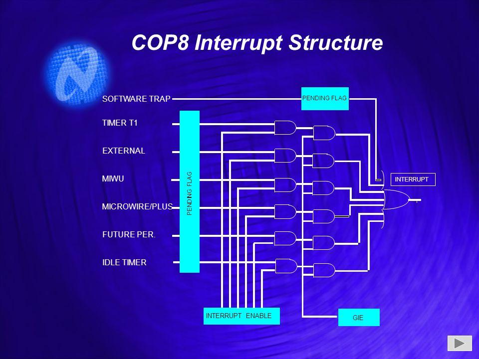 COP8 Interrupt Structure