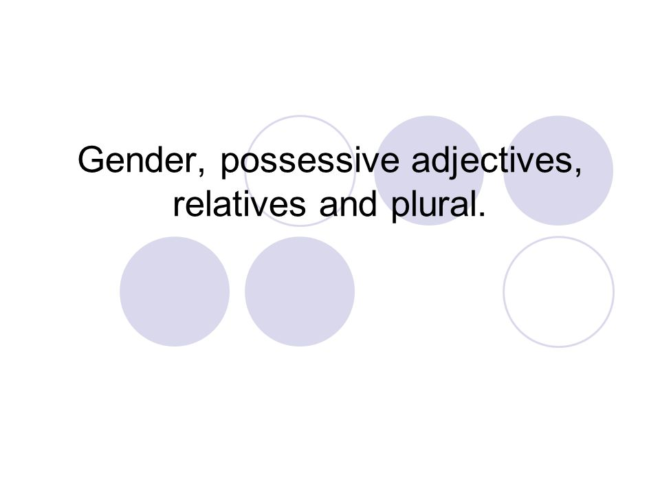 Gender, possessive adjectives, relatives and plural.