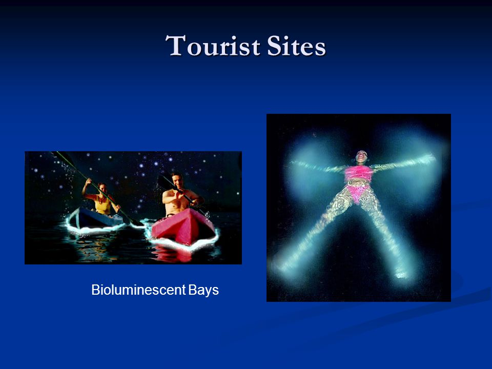 Tourist Sites Bioluminescent Bays