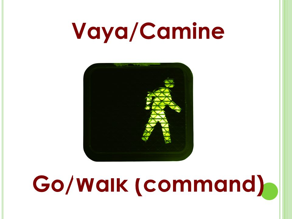 Vaya/Camine Go/Walk (command)
