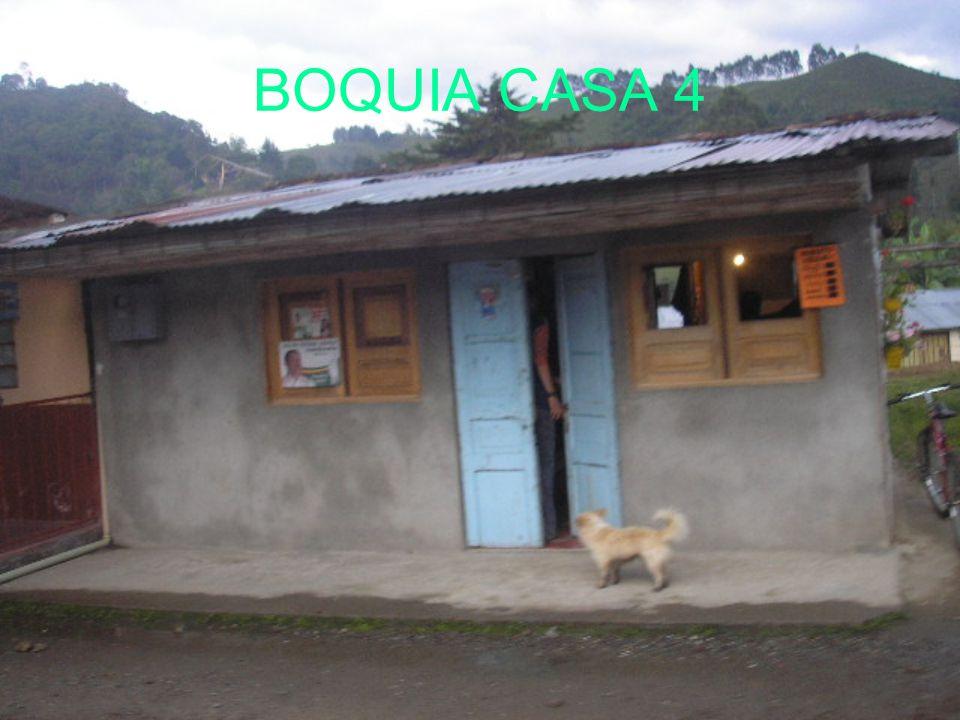 BOQUIA CASA 4