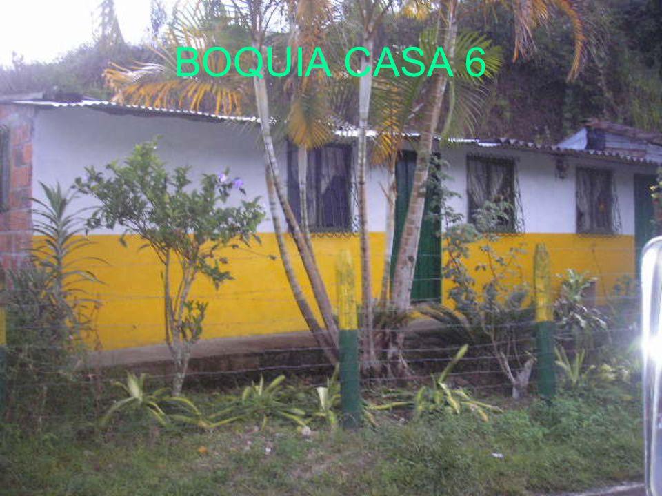 BOQUIA CASA 6