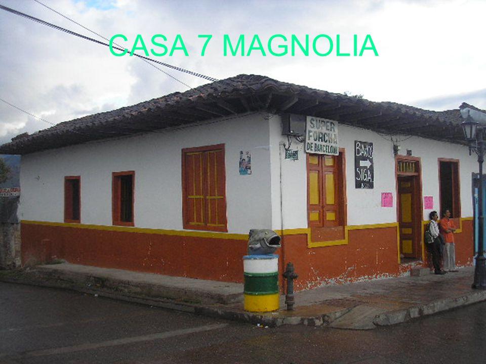 CASA 7 MAGNOLIA