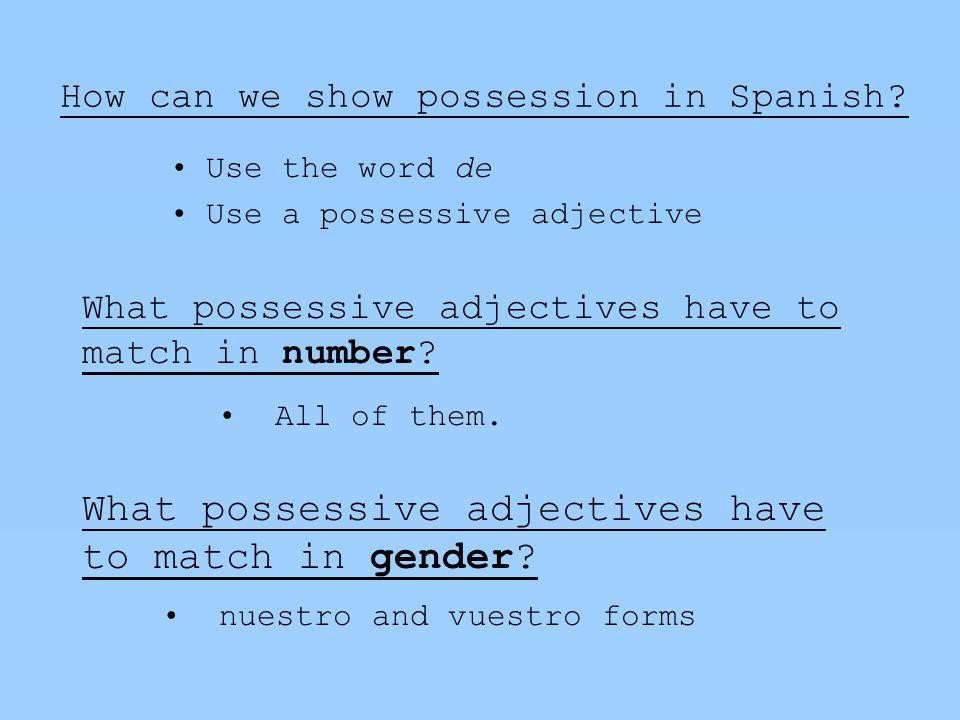 practicar El paquete de adjetivos possessivos Página 3, actividad G