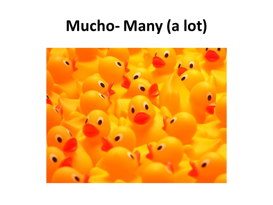 Mucho- Many (a lot)