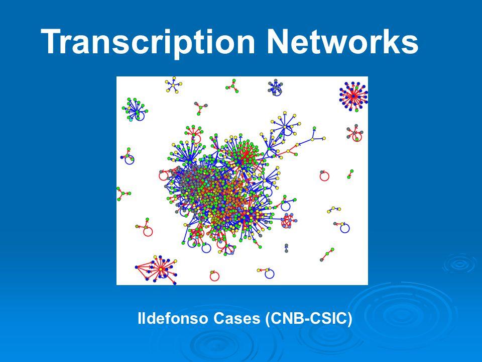 Transcription Networks Ildefonso Cases (CNB-CSIC)