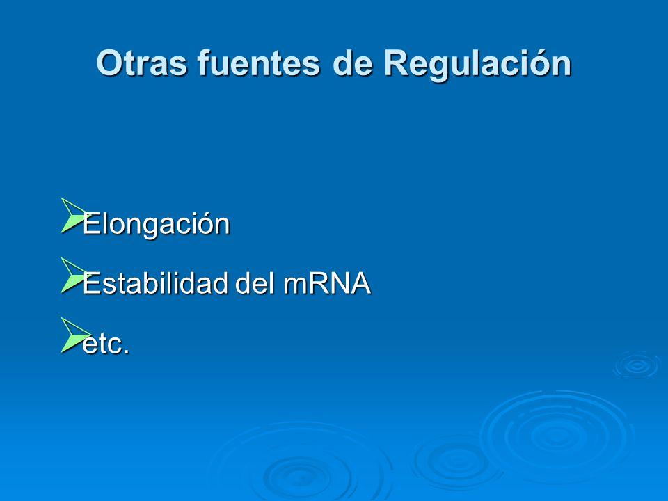 Otras fuentes de Regulación  Elongación  Estabilidad del mRNA  etc.