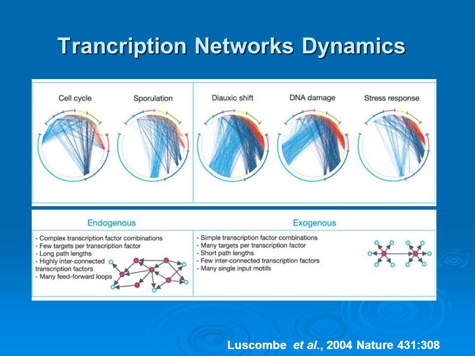 Trancription Networks Dynamics Luscombe et al., 2004 Nature 431:308