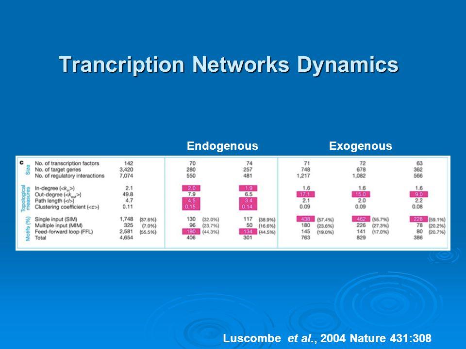 Trancription Networks Dynamics EndogenousExogenous