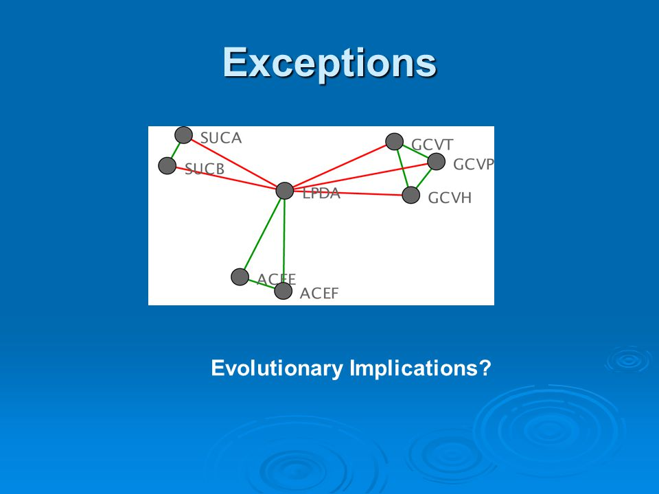 Exceptions Evolutionary Implications
