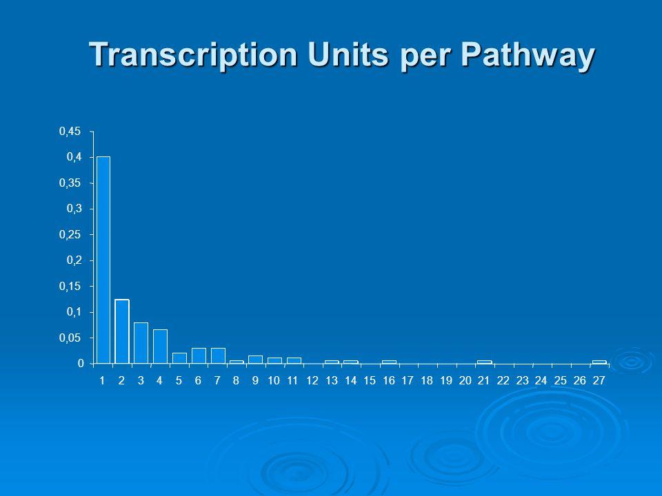 Transcription Units per Pathway 0 0,05 0,1 0,15 0,2 0,25 0,3 0,35 0,4 0,45 123456789101112131415161718192021222324252627