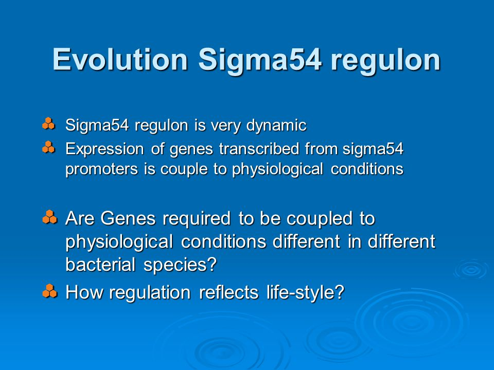 Evolution Sigma54 regulon Sigma54 regulon is very dynamic Expression of genes transcribed from sigma54 promoters is couple to physiological conditions Are Genes required to be coupled to physiological conditions different in different bacterial species.