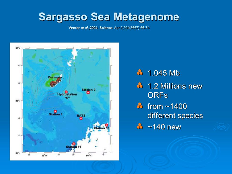 Sargasso Sea Metagenome Venter et al.,2004.