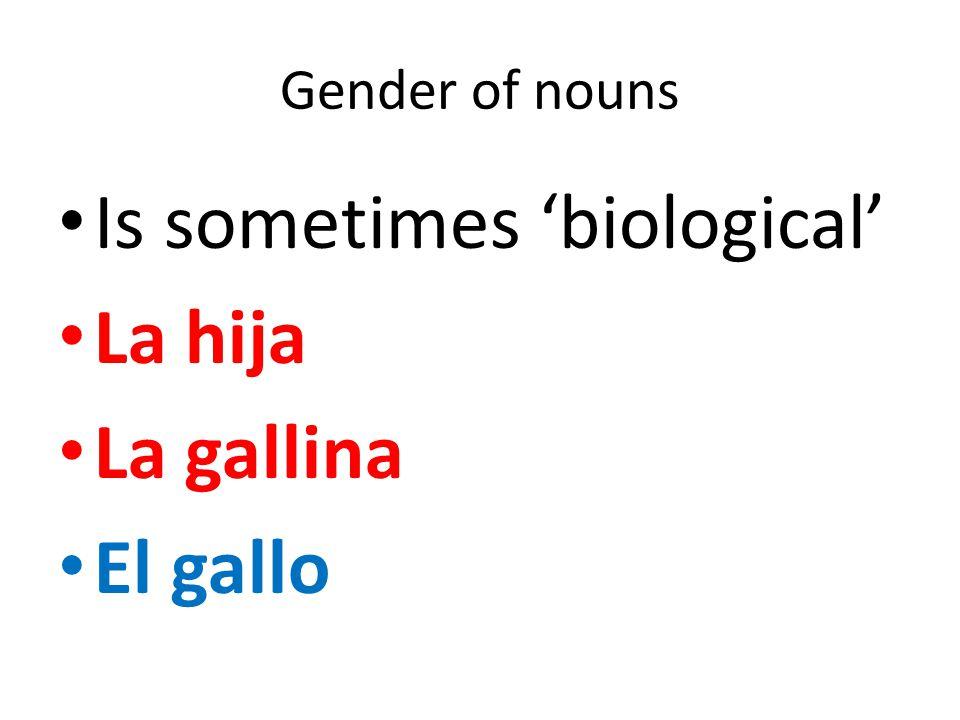 Gender of nouns Is sometimes 'biological' La hija La gallina El gallo