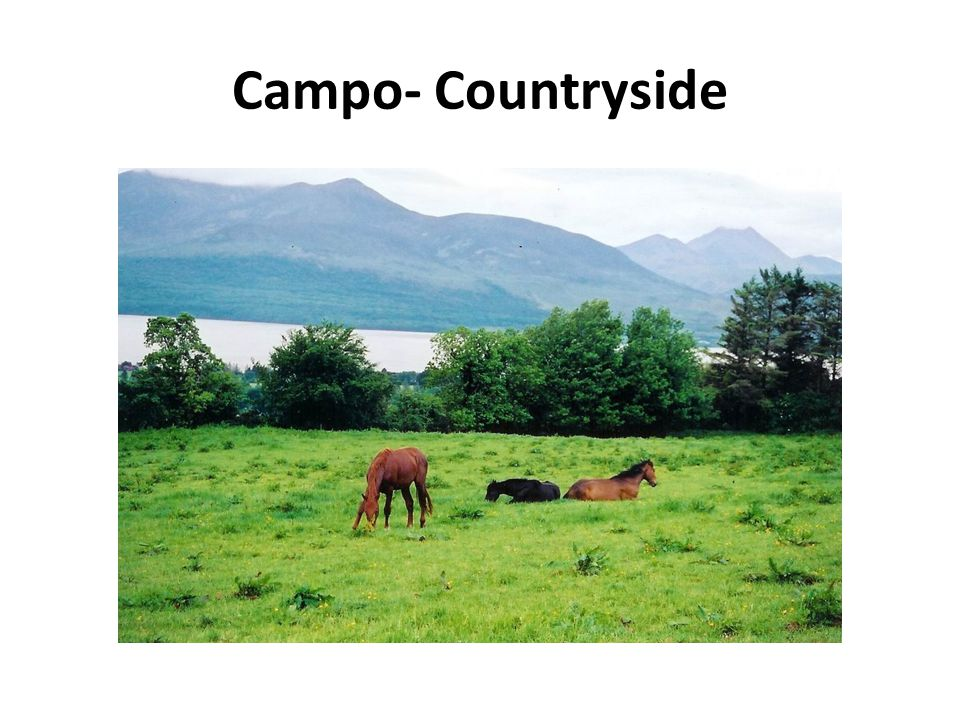 Campo- Countryside