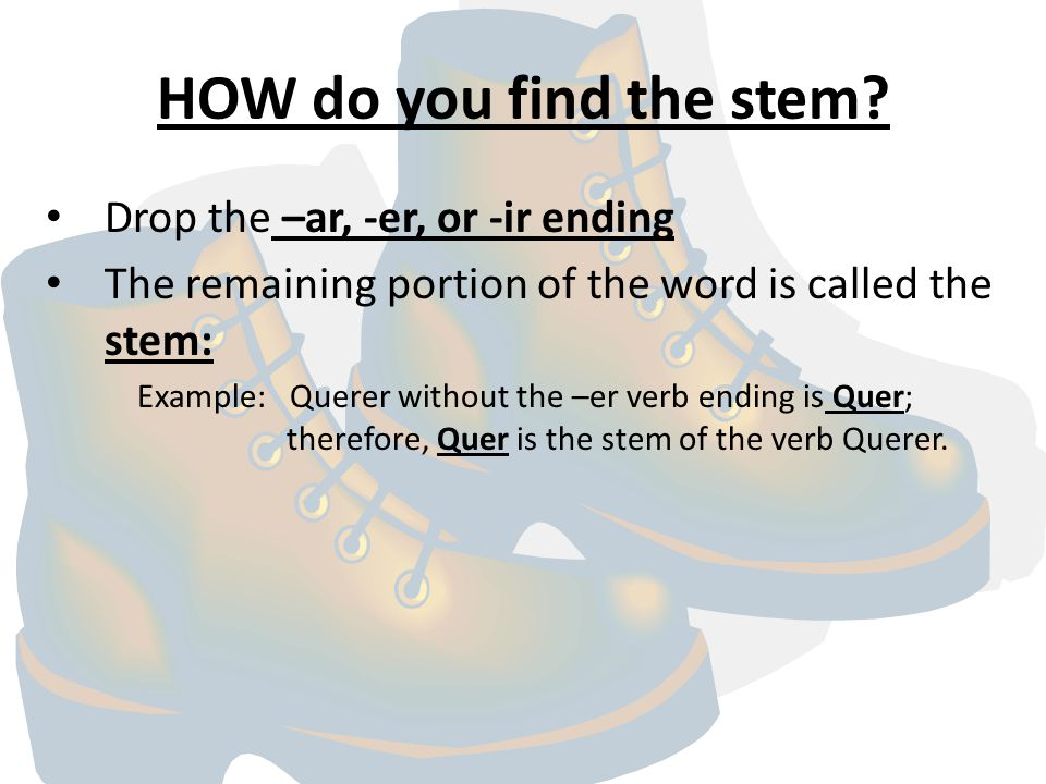 HOW do you find the stem.