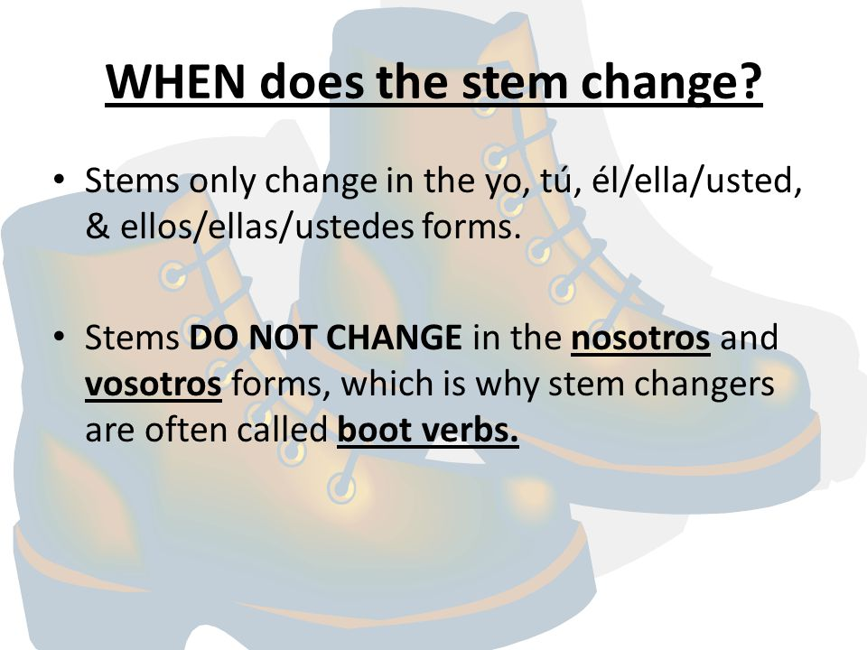 WHEN does the stem change.