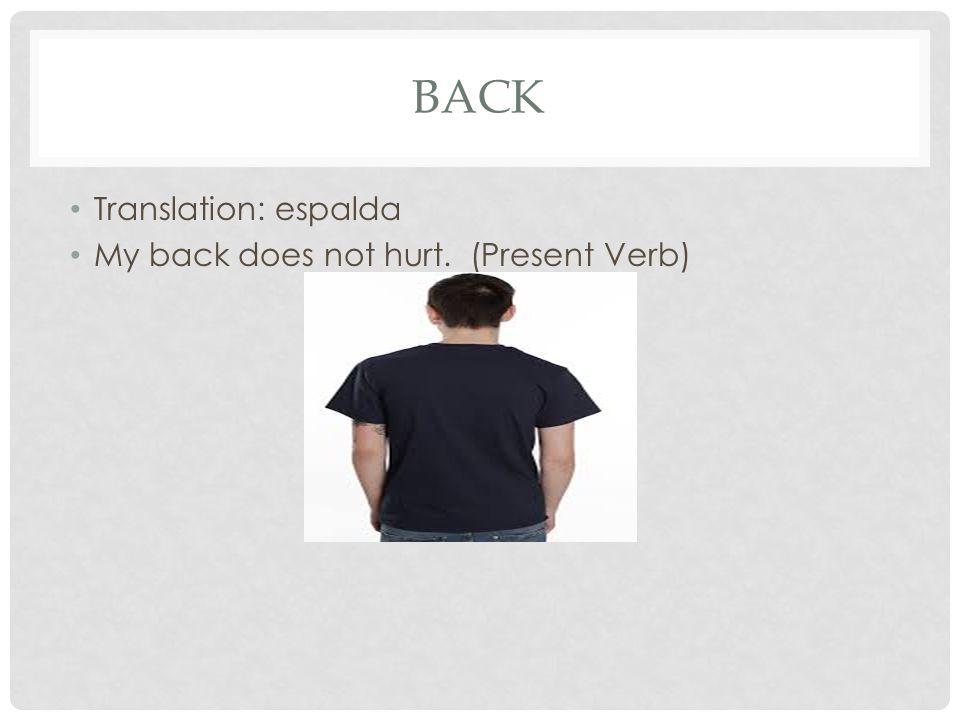 BACK Translation: espalda My back does not hurt. (Present Verb)
