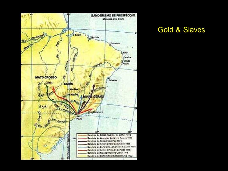 Gold & Slaves