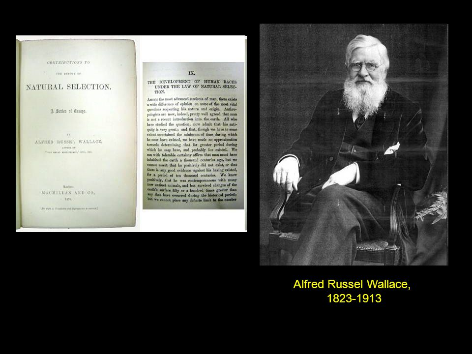 Alfred Russel Wallace, 1823-1913