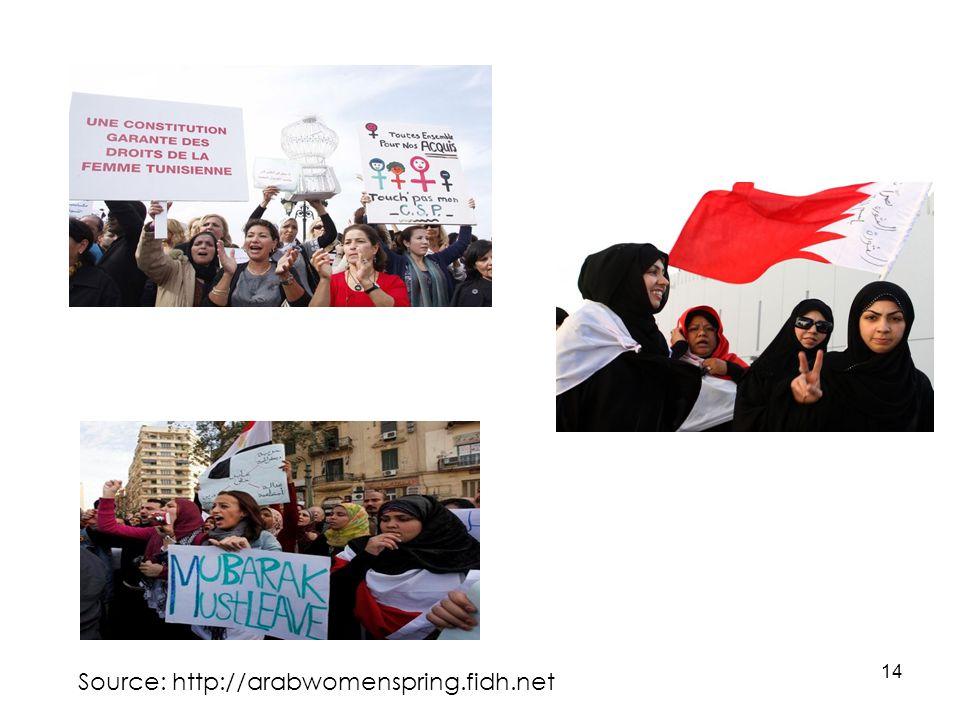 14 Source: http://arabwomenspring.fidh.net