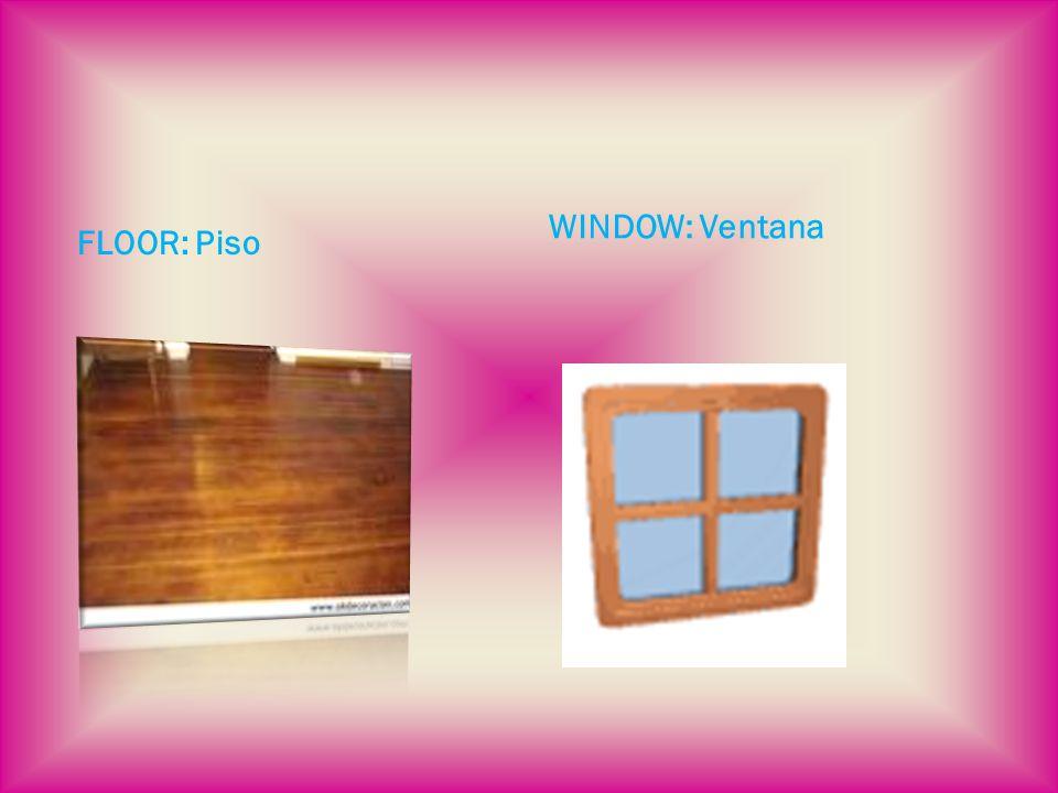 FLOOR: Piso WINDOW: Ventana