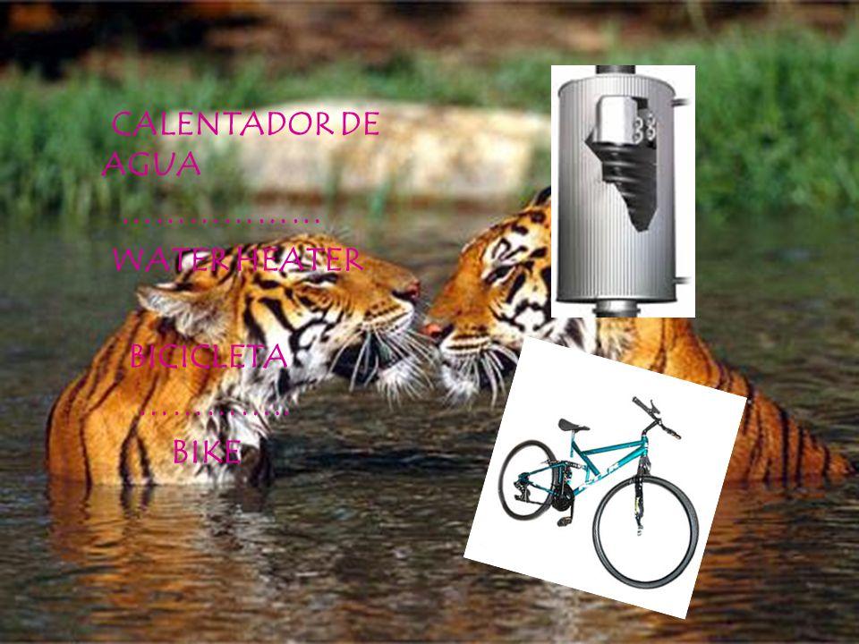 CALENTADOR DE AGUA ……………… WATER HEATER BICICLETA ………….. BIKE