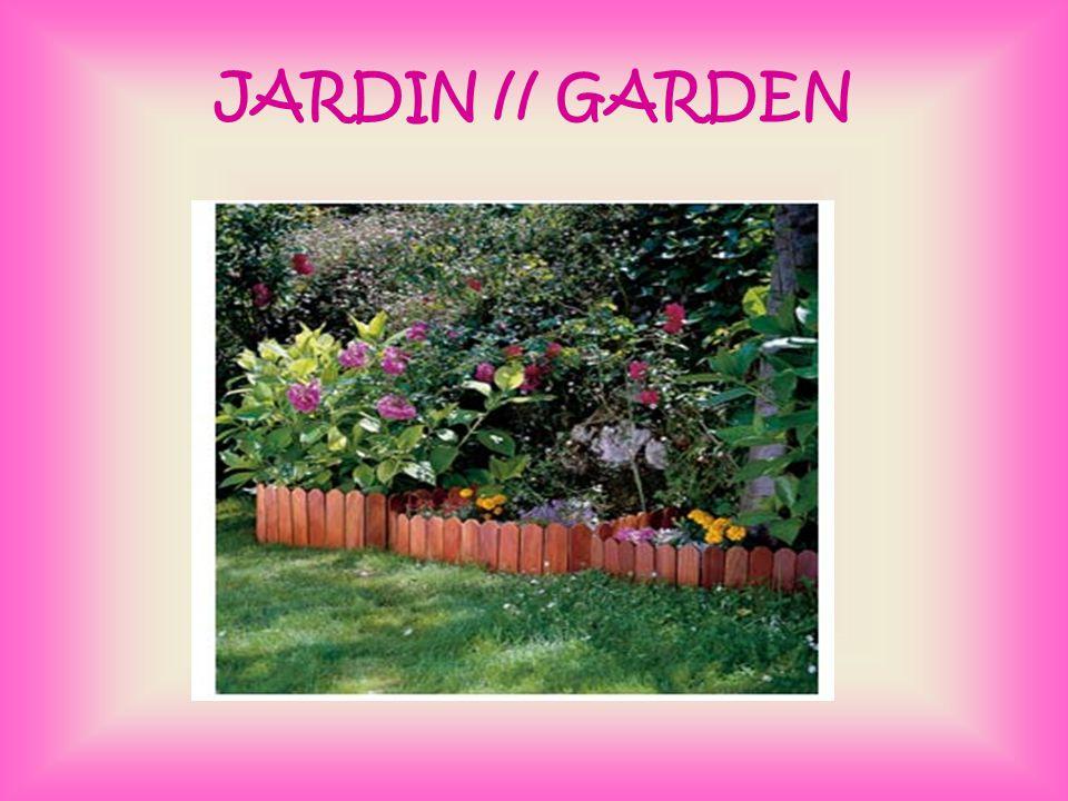 JARDIN // GARDEN
