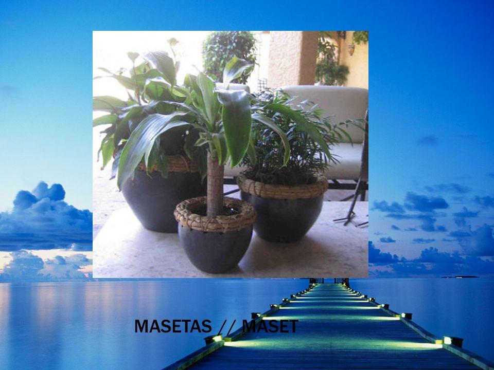 M ASETAS / / MASET