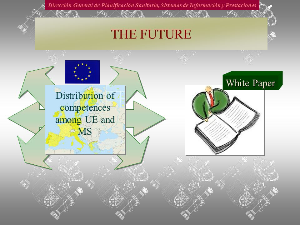 Dirección General de Planificación Sanitaria, Sistemas de Información y Prestaciones THE FUTURE Distribution of competences among UE and MS White Paper
