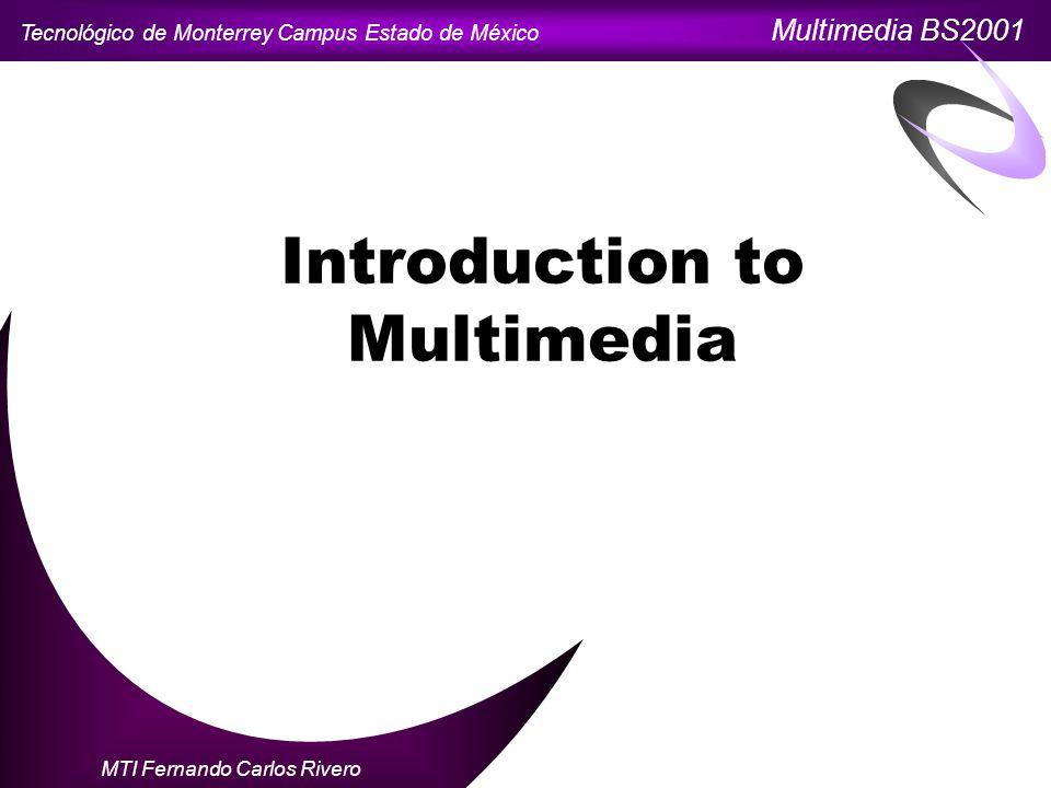 Tecnológico de Monterrey Campus Estado de México Multimedia BS2001 MTI Fernando Carlos Rivero Introduction to Multimedia