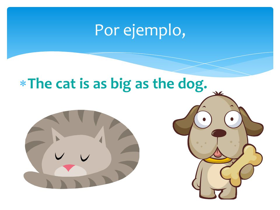  The cat is as big as the dog. Por ejemplo,